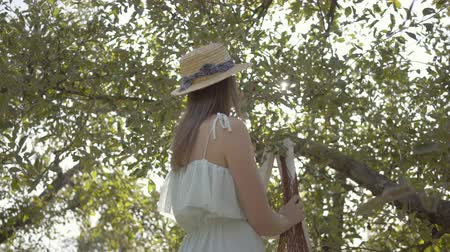 apple tree : Attractive young woman in straw hat and long white dress picking apples standing on a ladder in the green garden. Harvest time, rural lifestyle