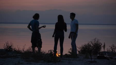 кемпинг : Young hipster friends chilling on seaside with bonfire making marshmallows with a fire and chatting in cozy summer evening Стоковые видеозаписи