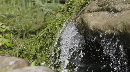 suyolu : Close-up of waterfall in the forest. Beauty of nature, wild nature. Amazing landscape. Summertime beauty.