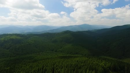 снижение : Top view of mountains covered with trees. Connection with nature. Traveling, tourism, vacation. Drone shooting, top view.