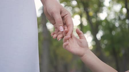 parentalidade : Close-up hands of woman and little girl standing in the park or forest. Happy family. One parent. Motherhood, parenthood, childhood. Leisure outdoors Stock Footage