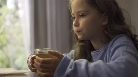 baca : Close-up of a little grey-eyed girl with a cup of hot tea sitting at the table. Cute child in blue sweater enjoying hot drink in the morning. Carefree childhood. Healthcare and alternative medicine.