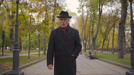 moudrý : Mature Caucasian man with grey hair dressed in elegant black hat and coat and burgundy scarf strolling along the alley. Mature guy resting after his retirement in the autumn park. Dostupné videozáznamy