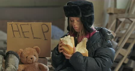 greedily : Portrait of a Syrian refugee with dirty face eating greedily the loaf of bread. Hungry homeless girl sitting on the street with Help cardboard and teddy bear.