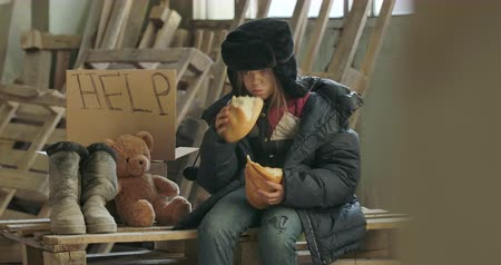 greedily : Portrait of a homeless girl with dirty face eating greedily the loaf of bread. Hungry lonely refugee sitting on the construction site with Help cardboard and teddy bear. Stock Footage