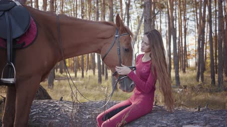 騎乗位 : Portrait of young Caucasian woman sitting in the autumn forest and caressing horses face. Smiling brunette equestrian resting outdoors with her lovely pet.