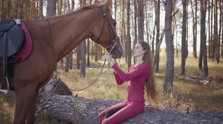 acariciando : Portrait of a young Caucasian woman with long brown hair sitting in the autumn forest and caressing horse. Smiling brunette equestrian resting outdoors with her lovely pet.