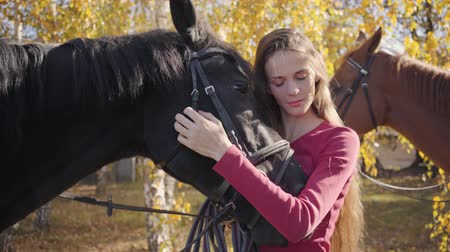rennpferd : Portrait of a charming brunette Caucasian girl in pink clothes hugging and caressing black horse. Beautiful female equestrian standing in the autumn forest with two animals.