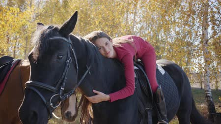 rennpferd : Young Caucasian female equestrian lying on horseback and caressing her pet. Graceful black horse standing in the autumn forest with the young rider on his back. Videos
