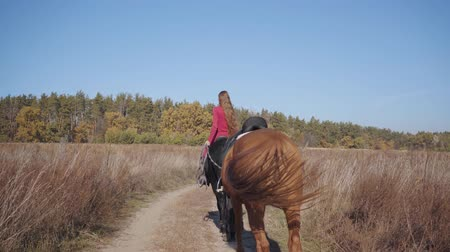 terbiye : Back view of a young Caucasian female equestrian riding the black horse on the dirt road and holding halter of the brown stallion. Professional jockey in pink clothes spending autumn day outdoors.