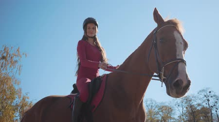 騎乗位 : Portrait of a cute Caucasian female equestrian in pink clothes and horse riding helmet sitting in sunlight on the horseback and smiling. Professional jockey posing in the autumn day outdoors.