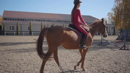 stallion : Slowmo of a Caucasian girl in pink clothes and helmet riding brown horse in the corral. Young female equestrian resting with her animal friend outdoors.