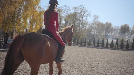 back side : Back view of a Caucasian girl in pink clothes and helmet riding brown horse in the corral. Young female equestrian resting with her animal friend outdoors. Slow motion. Stock Footage
