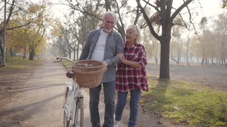 örök : Happy senior Caucasian couple walking with bicycle along the alley in the foggy park. Retired mature family spending autumn evening outdoors. Aging together, eternal love concept. Stock mozgókép