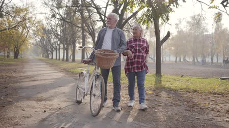 eternal : Smiling senior Caucasian couple walking with bicycle along the alley in the foggy park. Happy retired mature family spending autumn evening outdoors. Aging together, eternal love concept.