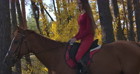 back side : Side view of Caucasian girl with long brown hair in pink clothes sitting on brown horseback in autumn forest. Young female equestrian resting with graceful animal outdoors. Cinema 4k footage ProRes HQ