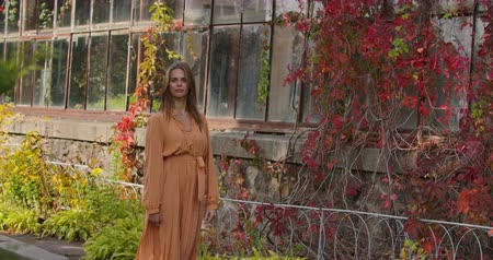 マスタード : Mysterious Caucasian woman walking by building covered with red bushes and smiling. Young attractive lady in mustard dress with tweed print strolling in autumn day. Cinema 4k footage ProRes HQ.