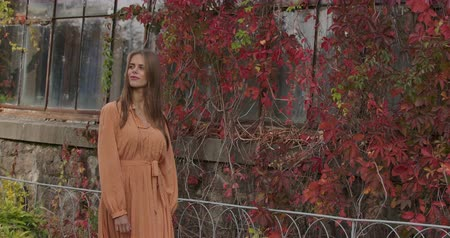 crows feet : Beautiful brunette Caucasian woman walking by building covered with red leaves, looking aroung. Young lady in mustard dress with tweed print strolling in autumn day. Cinema 4k footage ProRes HQ.