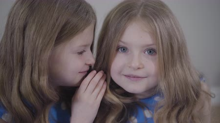 união europeia : Close-up of little pretty Caucasian girl whispering on twin sisters ear and showing hush gesture. Joyful twins keeping secrets of each other. Lifestyle, unity, happiness. Stock Footage