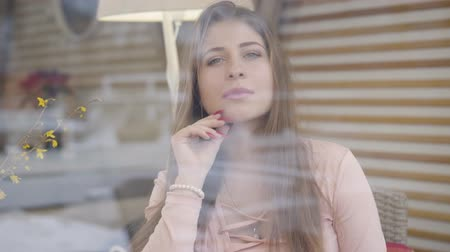gözlü : Portrait of gorgeous brunette grey-eyed Caucasian girl behind window glass. Confident young woman looking at camera and smiling. Lifestyle, beauty, elegance.