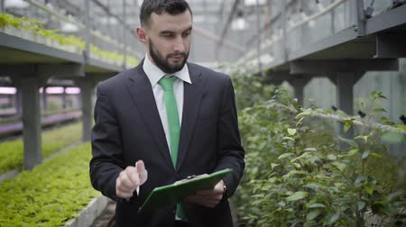 fertilizing : Young confident Caucasian man in suit walking to camera in greenhouse and leaving. Professional businessman controlling production of organic vegetarian food in glasshouse. Agriculture, agronomy.