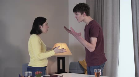 quarreling : Side view of adult Caucasian woman and teenage boy arguing and gesturing emotionally indoors. Son and mother quarrelling at home. Conflict, misunderstanding, adolescence, motherhood. Stock Footage