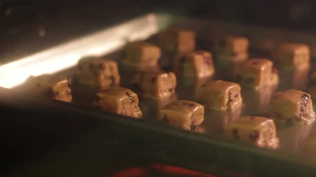 готовые к употреблению : Time lapse of chocolate chip cookies baking in the oven with camera panning. Стоковые видеозаписи