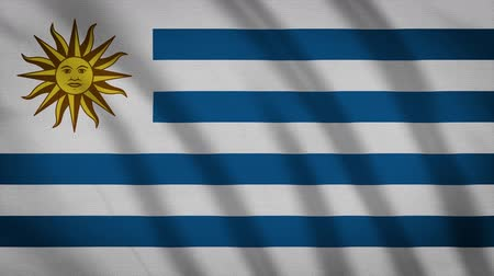 proportions : Uruguay Flag Waving Cloth, Background Loop