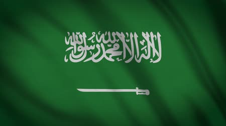 creased : Saudi Arabia Flag Waving Animation. Full Screen. Symbol Of The Country.