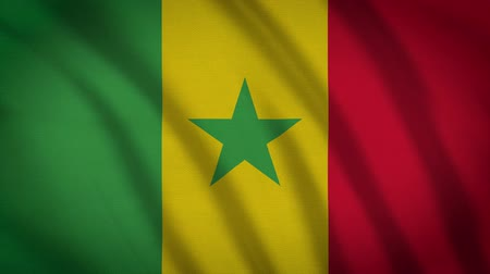 democrat : Senegal Flag Waving Animation. Full Screen. Symbol Of The Country.
