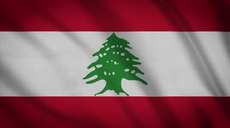 президент : Lebanon Flag Waving Animation. Full Screen. Symbol Of The Country.