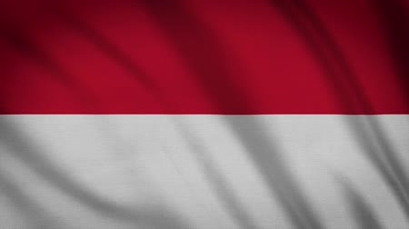 creased : Indonesia Flag Waving Animation. Full Screen. Symbol Of The Country.
