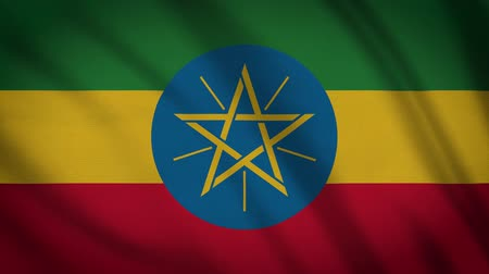 demokratický : Ethiopia Flag Waving Animation. Full Screen. Symbol Of The Country.
