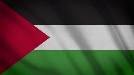 emel : Large Looping Animated Flag Of Palestine Stock mozgókép