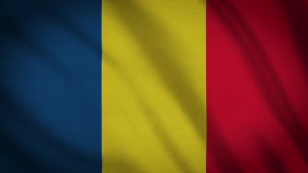süreklilik : Romania Flag Waving Animation. Full Screen. Symbol Of The Country.