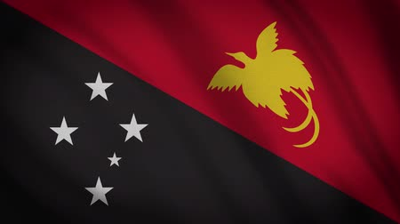 monarchy : Papua New Guinea Flag Waving Cloth Background Loop Stock Footage