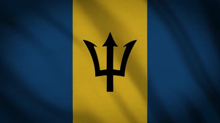 barbados : Barbados Flag Is Waving 3D Animation. Stock Footage