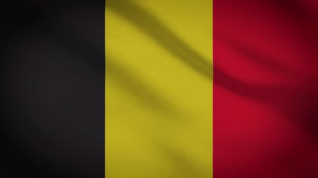 creased : Belgium Flag Waving Animation. Full Screen. Symbol Of The Country. Stock Footage