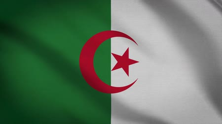 algeria : Algeria Flag Waving Animation. Full Screen. Symbol Of The Country.