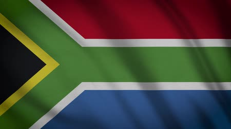 apartheid : South Africa Flag Waving Animation. Full Screen. Symbol Of The Country. Stock Footage
