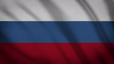 üç renkli : Russia Flag Waving Animation. Full Screen. Symbol Of The Country. Stok Video