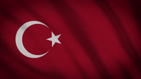 török : Turkey Flag Waving Animation. Full Screen. Symbol Of The Country. Stock mozgókép