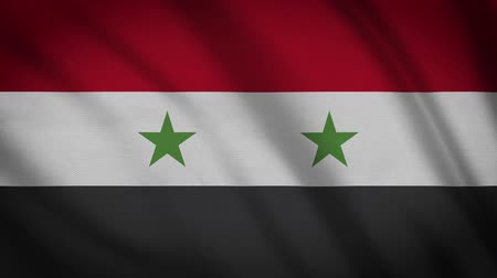 damasco : Syria Flag Waving Animation. Full Screen. Symbol Of The Country.