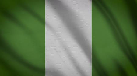 alegori : Nigeria Flag Waving Animation. Full Screen. Symbol Of The Country.