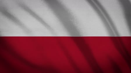 ensign : Poland Flag Waving Animation. Full Screen. Symbol Of The Country.