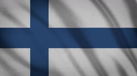 democrat : Finland Flag Waving Animation. Full Screen. Symbol Of The Country. Stock Footage