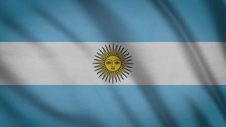 creased : Argentina Flag Waving Animation. Full Screen. Symbol Of The Country.