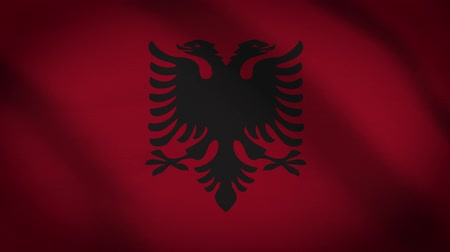 albanie : Albania Flag Waving Animation. Full Screen. Symbol Of The Country. Stockvideo