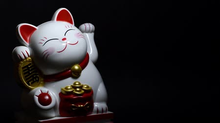 boneca : Lucky Asian Cat On Black Background