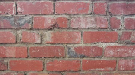 bağ : Wall Of Red Brick. Video For The Background